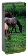 Grazing - Watercolor Portable Battery Charger