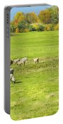 Grazing Sheep On Farm In Autumn Maine Portable Battery Charger