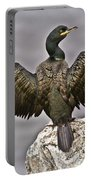 Great Black Cormorant II Portable Battery Charger by Heiko Koehrer-Wagner