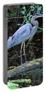 Great Blue Heron, Florida Portable Battery Charger