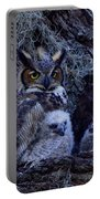 Great Horned Owl Twins Portable Battery Charger