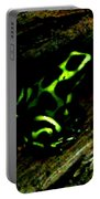 Green And Black Poison Dart Frog Portable Battery Charger