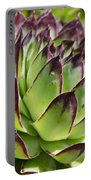 Green And Red Succulent Portable Battery Charger