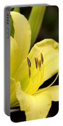 Green And Yellow - Lily Portable Battery Charger
