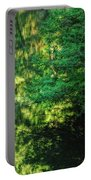 Green Dream Portable Battery Charger