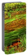 Green Forest River Portable Battery Charger