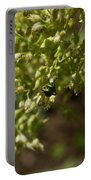 Green Helicid Bee 6 Portable Battery Charger