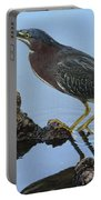Green Heron Visiting The Pond Portable Battery Charger