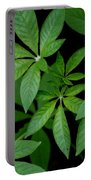 Green Is Beautiful Portable Battery Charger