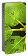 Green Leaves With Water Droplets Portable Battery Charger