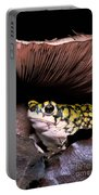 Green Toad Portable Battery Charger