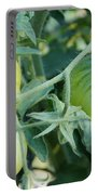 Green Tomato On The Vine Portable Battery Charger