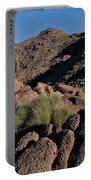 Green Tuft In Sandstone Portable Battery Charger