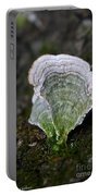 Green Turkey Tails Portable Battery Charger