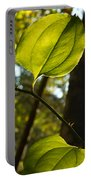 Greenbriar Leaf And Vine 1 Portable Battery Charger