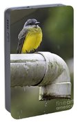 Grey-capped Flycatcher Portable Battery Charger