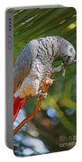Grey Parrot Portable Battery Charger