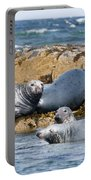 Grey Seals Portable Battery Charger