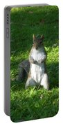 Greynolds Park Squirrel Portable Battery Charger