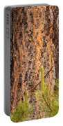 Grizzly Bear Cub Up A Tree, Yukon Portable Battery Charger