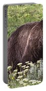 Grizzly Bear In Yellowstone Neg.28 Portable Battery Charger