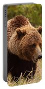 Grizzly Bear, Yukon Portable Battery Charger