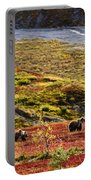 Grizzly Bears And Fall Colours, Denali Portable Battery Charger
