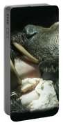 Grizzly Eating Portable Battery Charger