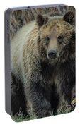 Grizzly Ramble Portable Battery Charger
