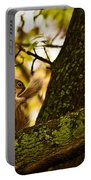 Grooming Grey Squirrel Portable Battery Charger