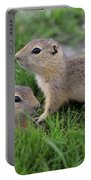 Ground Squirrels, Oak Hammock Marsh Portable Battery Charger