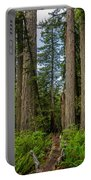 Group Of Redwoods Portable Battery Charger