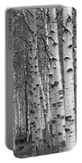 Grove Of Birch Trees Portable Battery Charger