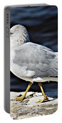 Gull 2 Portable Battery Charger