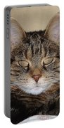 Gypsy 0007 Portable Battery Charger