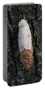 Gypsy Moth With Egg Mass Portable Battery Charger