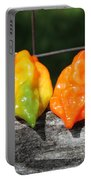 Habaneros Portable Battery Charger