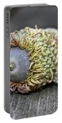 Hairy Acorn Portable Battery Charger