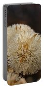 Hairy Aster Portable Battery Charger