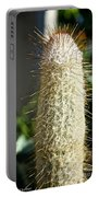 Hairy Cactus Portable Battery Charger