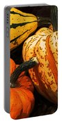 Halloween Colors Portable Battery Charger