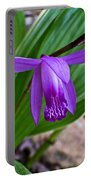 Hardy Orchid 1 Portable Battery Charger