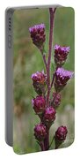 Harebell Buds Portable Battery Charger