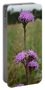 Harebell Portable Battery Charger