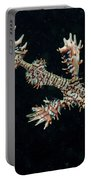 Harlequin Ghost Pipefish With Fins Portable Battery Charger