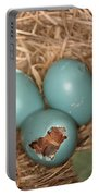 Hatching Robin Nestlings Portable Battery Charger