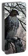 Hawk 6 Portable Battery Charger