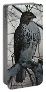 Hawk 7 Portable Battery Charger