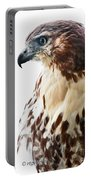 Hawk Majesty Portable Battery Charger