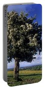 Hawthorn Tree On A Landscape, Ireland Portable Battery Charger